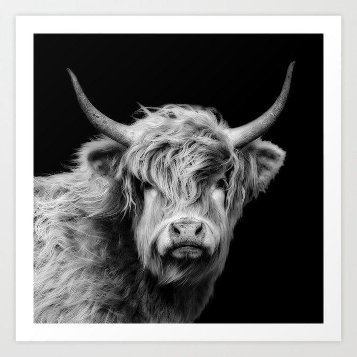 Highland Cow Black And White Art Print