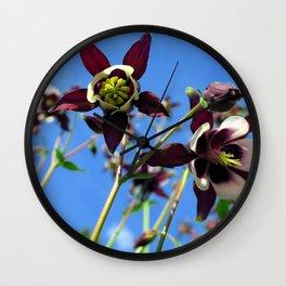 Velvet stars - Columbine flowers Wall Clock