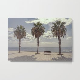 Palm trees in Palma de Mallorca Metal Print