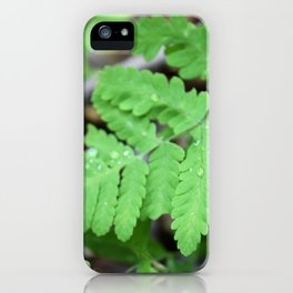 Northern Oak Fern and Raindrops iPhone Case