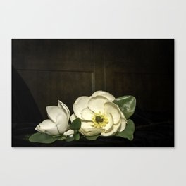 Magnolia blooms on the table  Canvas Print