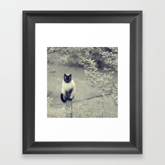 Sitting, Waiting, Wishing II Framed Art Print