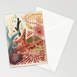 Great Barrier Reef Echinoderms from The Great Barrier Reef of Australia (1893) by William Saville-Ke Stationery Cards
