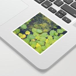 Pond by Althéa Photo Sticker