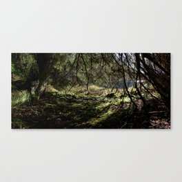 Idyll at the pond Canvas Print