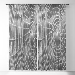 Black and White Spiders Web Sheer Curtain