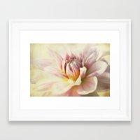 dahlia Framed Art Prints featuring dahlia by lucyliu