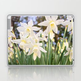 Kiss of Spring Laptop & iPad Skin