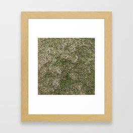 Stone and moss Framed Art Print