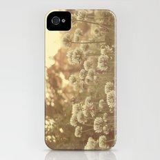 Sweet Sweet Clover iPhone (4, 4s) Slim Case