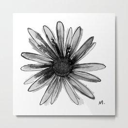 Daisy One Metal Print