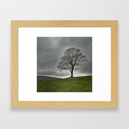 Standing all alone Framed Art Print