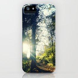 Autumn forest sunset iPhone Case