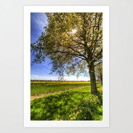 The Daffodil Summer Farm Art Print