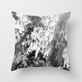 huntington solitude - the huntington botanical gardens, san marino Throw Pillow
