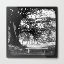 The Park Bench - Through The Viewfinder (TTV) Metal Print