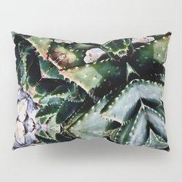 Succulents On Show No 2 Pillow Sham
