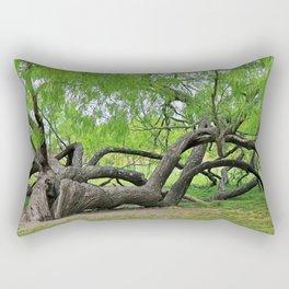 The Tree at Mission San Juan Rectangular Pillow