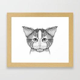 Cat 9 Framed Art Print