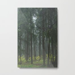 Forest#1 Metal Print
