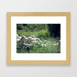 Ewe Are Sheep Framed Art Print