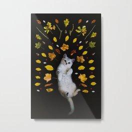 Kitty Harvest (Color) Metal Print