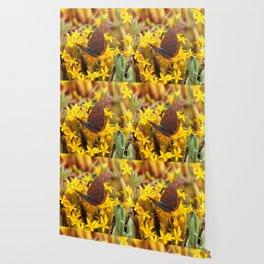 Butterfly 011 Wallpaper