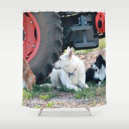 Farm Dogs Shower Curtain