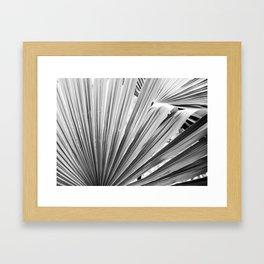 Black and White Palm Leaf Framed Art Print