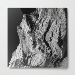 Wood Photography   Nature   Landscape   Black and White Metal Print