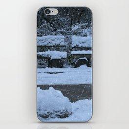 Winter Time iPhone Skin