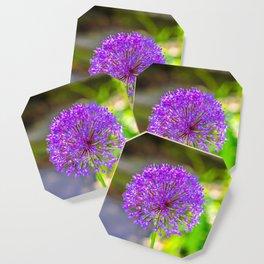 Purple + Blue Flower Coaster