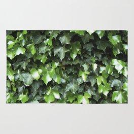 Evergreen Ivy Rug