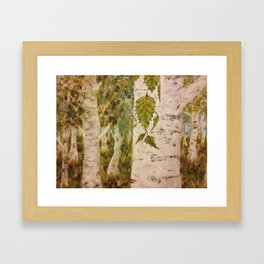 Birch Forth into Song Framed Art Print