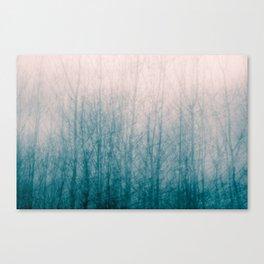Winter Primary 01 Canvas Print