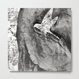 Carolina Parakeet Monument Metal Print