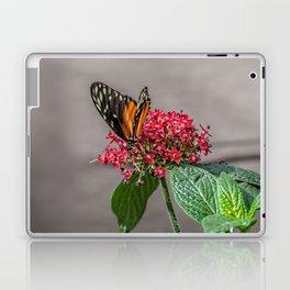 Tiger Longwing Laptop & iPad Skin
