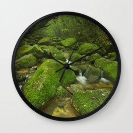 River along Shiratani Unsuikyo rainforest trail on Yakushima Island, Japan Wall Clock