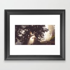 dawn in the day Framed Art Print