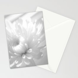 Infrared Flower Botanical / Nature / Floral Photograph Stationery Cards