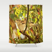 sparrow Shower Curtains featuring Sparrow by Judy Palkimas