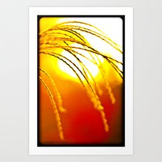 Fall Grass Art Print