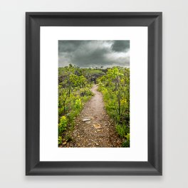 The path of Cerrado. Rocky trail surrounded by the Cerrado vegetation of Brazil on a cloudy day. Framed Art Print