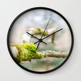 Branch in the Fall Wall Clock