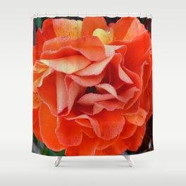 pandora's box Shower Curtain