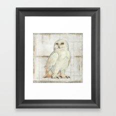 SnowOwl Framed Art Print