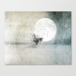 Only the Moon Knows Canvas Print