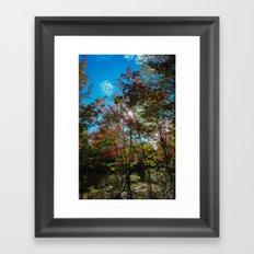 Blue Skies Above Me, Autumn Leaves Surround Me Framed Art Print