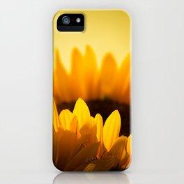 Sunflower Rise iPhone Case
