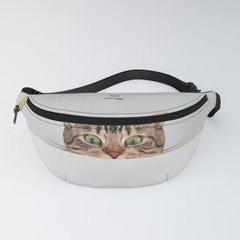 Cat on Gray Fanny Pack